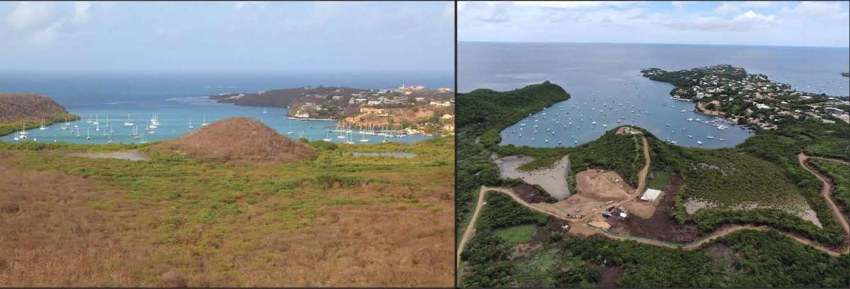 Mt. Hartman wetlands in June 2014 (left; photo by Greg Homel) before vegetation was cleared for Grenada Resorts (2015) and Mt. Hartman Resorts Group (2020). Mt. Hartman wetlands in August 2020 (right; photo by Reginald Joseph), following the removal of dry scrub and mangrove forests without the knowledge of the Physical Planning Unit.