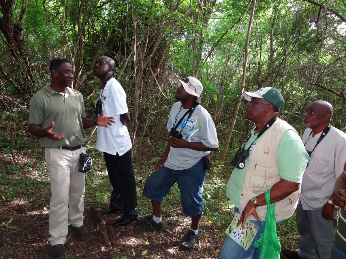 Anthony Jeremiah (far left) of the Forestry and National Parks Department of Grenada, explaining the behavior of birds to participants