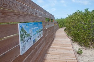 Boardwalk and sign
