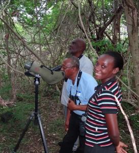 Participants of the CBT Interpretive Guide Training in Grenada