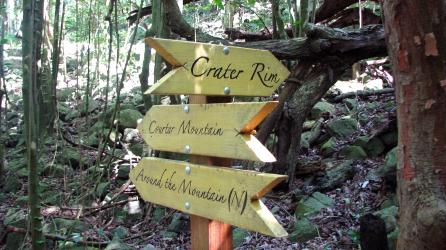 Quill Directional Signs (Photo by Hannah Madden)