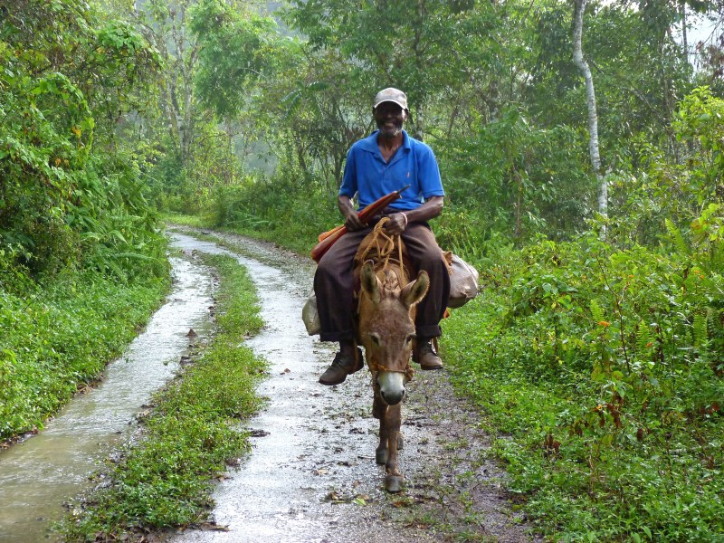 Farmer coming from the fields.