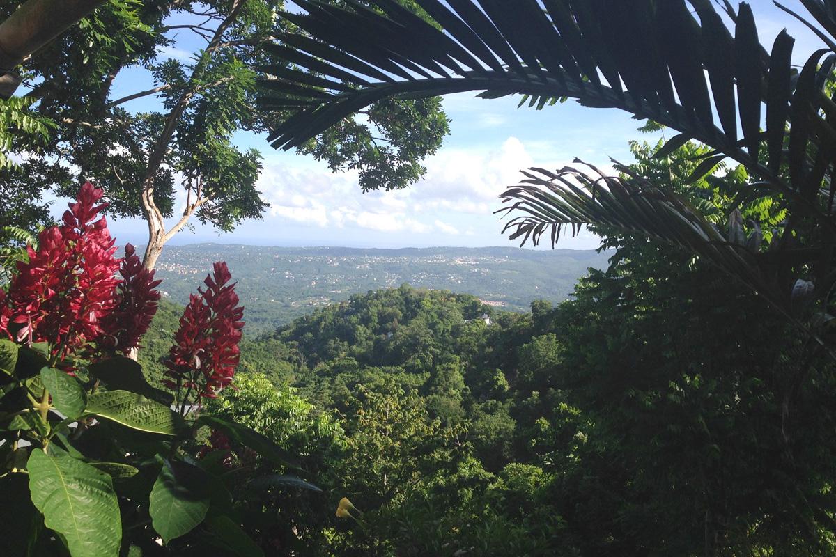 View from Ahhh…Ras Natango Gallery and Garden