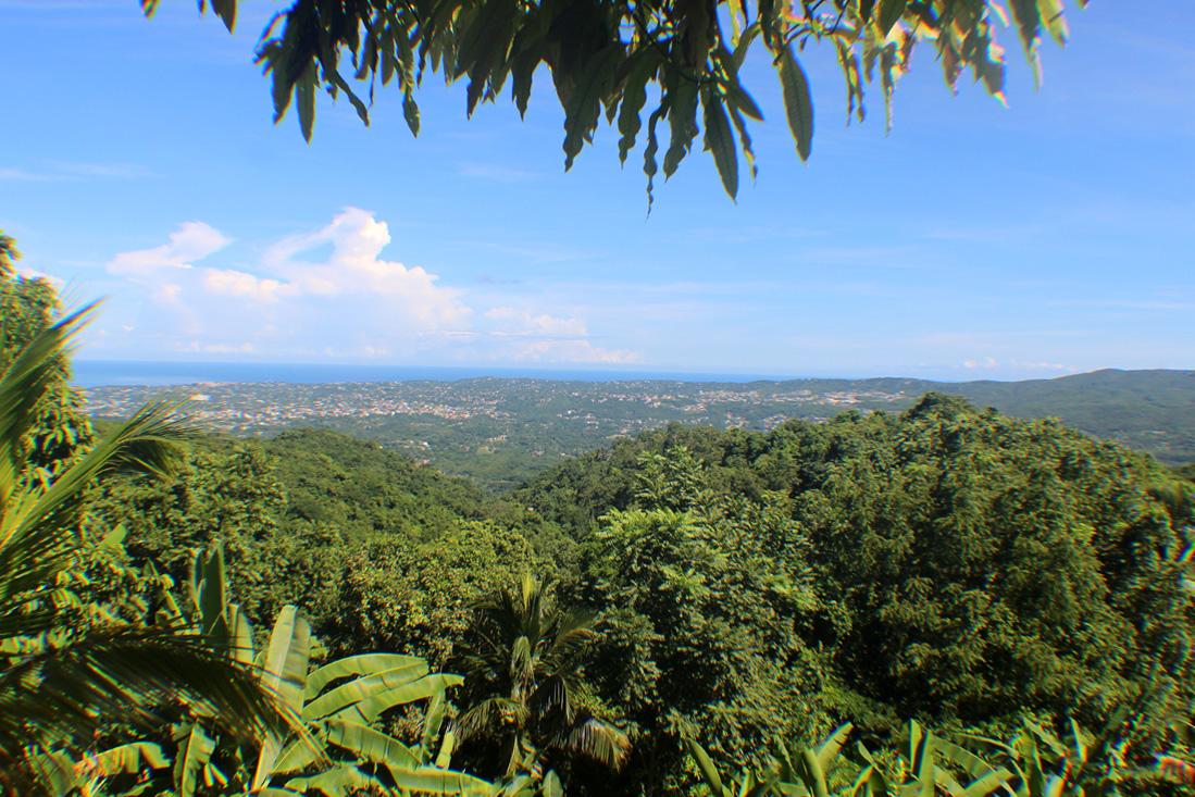 View from Ahhh…Ras Natango Garden