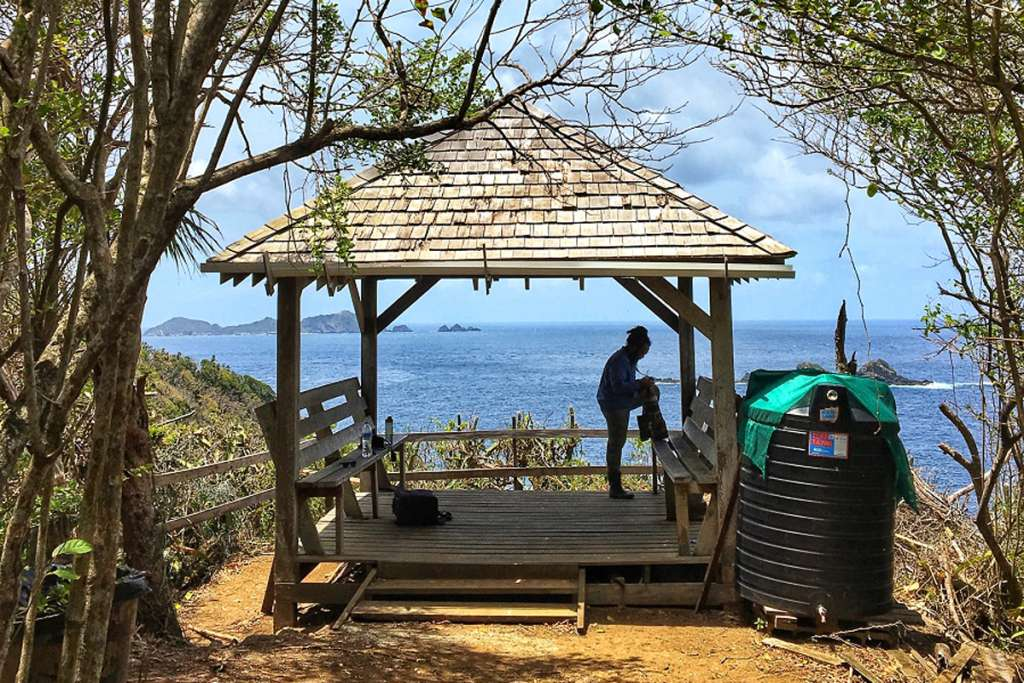 Little Tobago Lookout